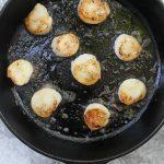 sea scallops in a cast iron pan