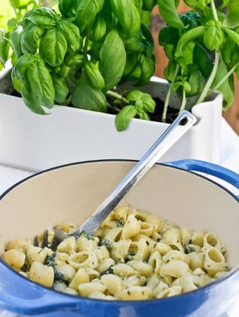 Pesto Spinach Macaroni and Cheese- Easy, Gourmet Mac + Cheese, Ready in 20 Minutes Start to Finish! - champagne-tastes.com