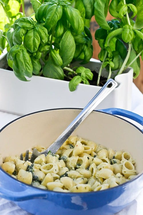 Pesto Spinach Macaroni and Cheese