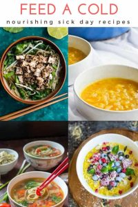 feed a cold sick day recipes pin