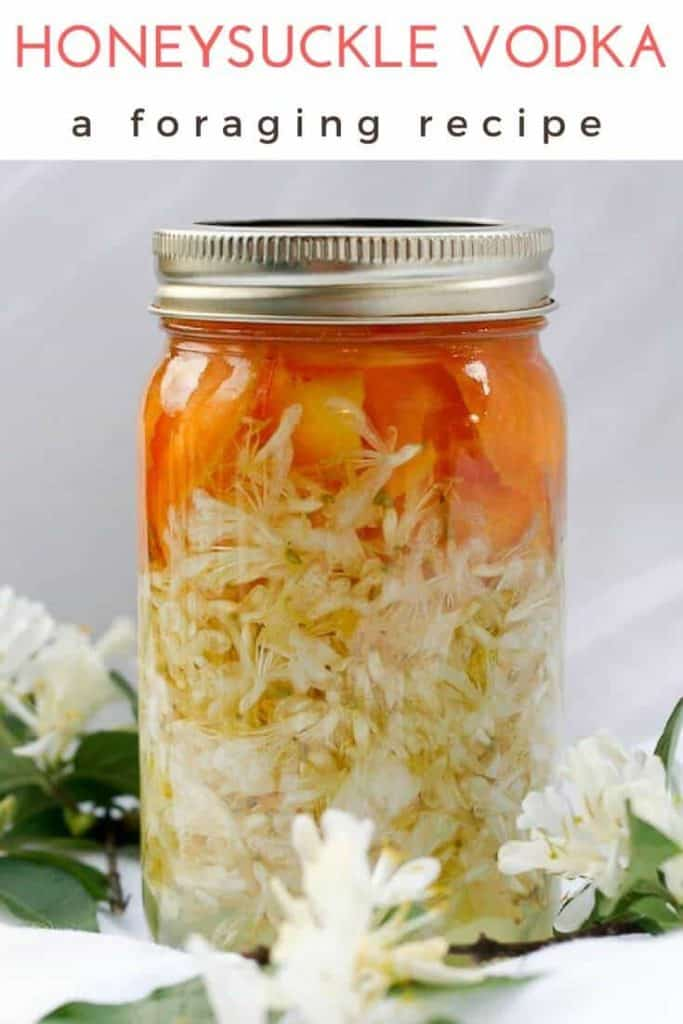 This simple honeysuckle recipe shows how to make homemade honeysuckle vodka (an easy flower liqueur) with foraged flowers, vodka, and simply syrup.