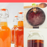 Want to learn how to make kombucha? This tutorial will walk you through each step, plus check out our tips on equipment, carbonating, continuous brew, and more!