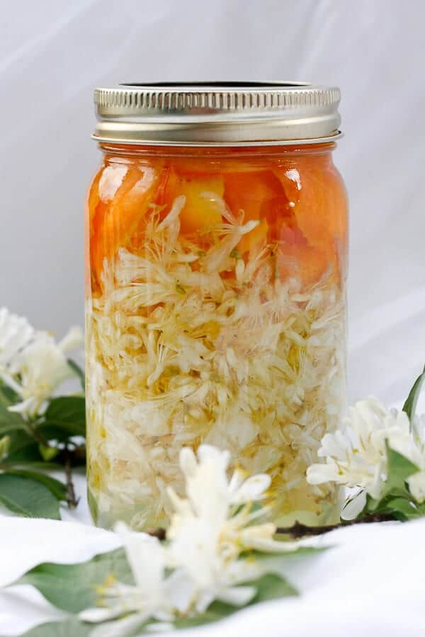 Infusing Honeysuckle Vodka in a mason jar