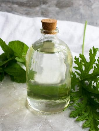 citronella simple syrup, citronella geranium leaves (mosquito plant leaves) + mint leaves