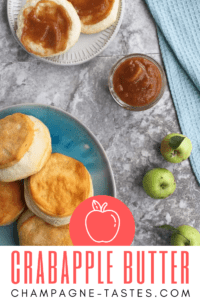 This crabapple recipe uses the small, tart apples and turns them into a delicious batch of slow cooker apple butter.