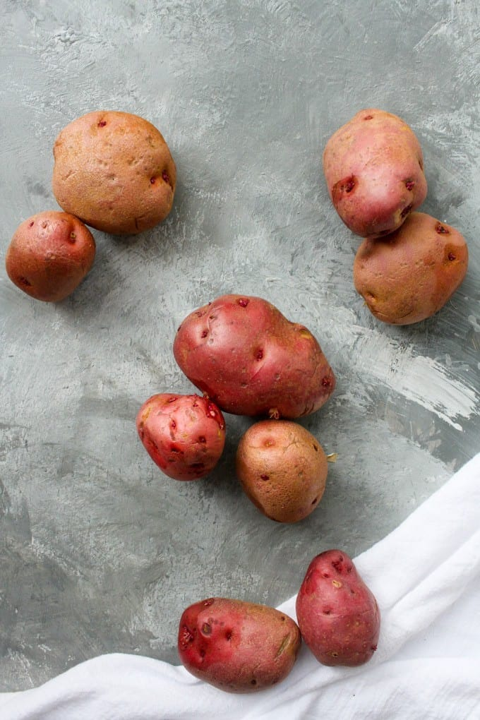 waxy red potatoes