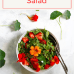 This nasturtium salad uses both nasturtium leaves and flowers, along with arugula, strawberries, and a quick vinaigrette. Make it for a quick and easy summer salad!