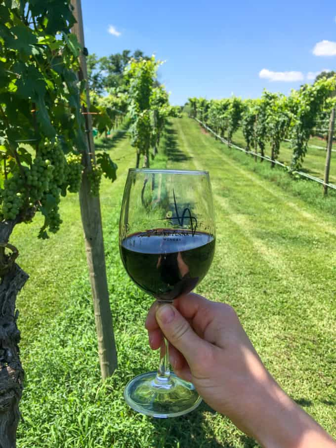 wine tasting petit verdot at lake anna winery + vineyard