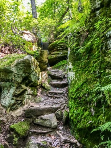 stairway to raven bridge