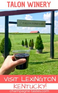 Looking for things to do in Lexington, KY? We visited the Talon Winery, and here's what we thought.