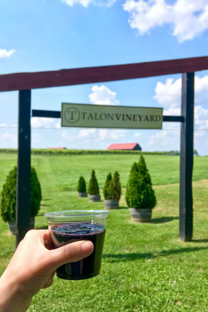 drinking wine at talon winery (fun things to do in lexington kentucky)