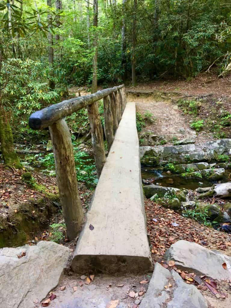 Log Bridge over Abrams Creek