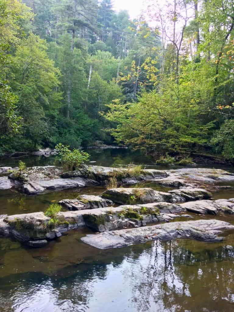 Abrams Creek along the trail