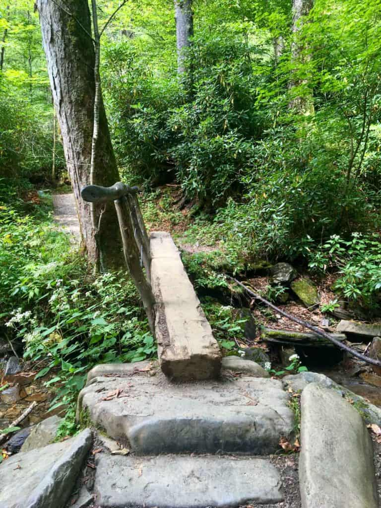 Log Bridge on the Trail
