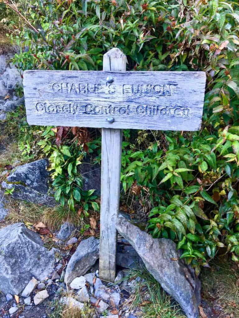 Sign for Charlies Bunion