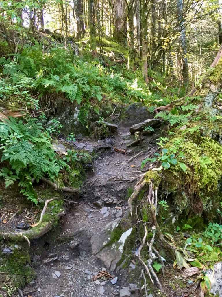 The Jump Off Trail