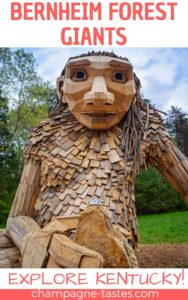 Kentucky's Bernheim Arboretum and Research Forest is home to a new art installation-- GIANTS! We visited the wooden giants recently, and here's what we thought.