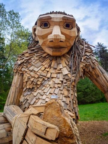 Little Elina - a bernheim forest giant
