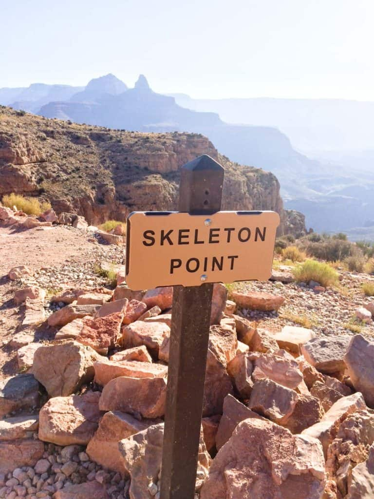 Skeleton Point