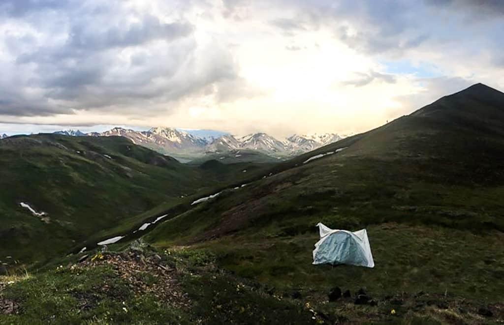 tent in denali national park