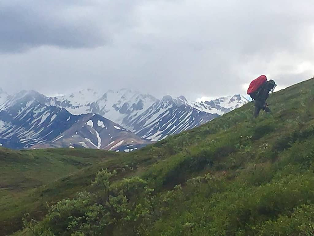 hiking in denali national park