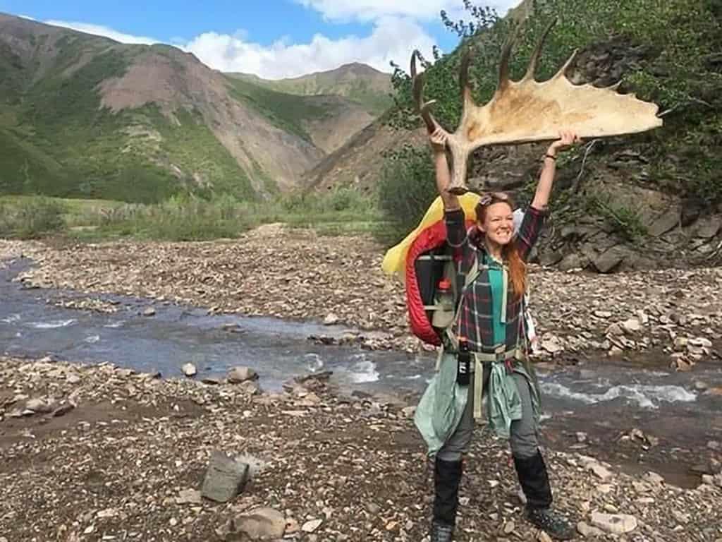 finding moose antlers