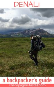 Are you planning to go backpacking in Denali National Park? This backpacker's guide will help you plan an Alaska getaway!