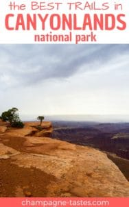 Are you planning to go hiking in Canyonlands National Park? Check out our picks for the best trails in the park!