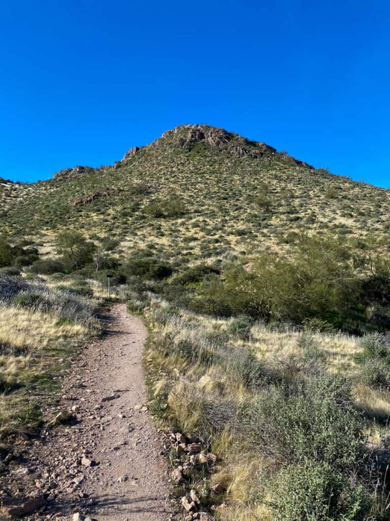 Superstition View Trail