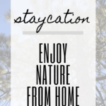 Want to enjoy nature, but you're stuck at home? Here are some of our favorite nature staycation ideas to enjoy the great outdoors from home.