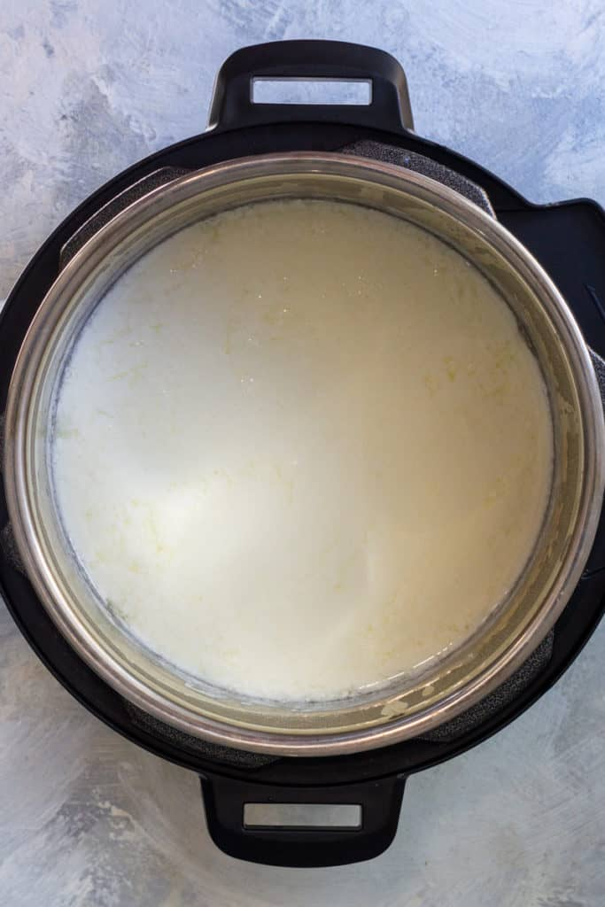 "Press ""Yogurt"" on Instant Pot. Ferment for 4-10 Hours."