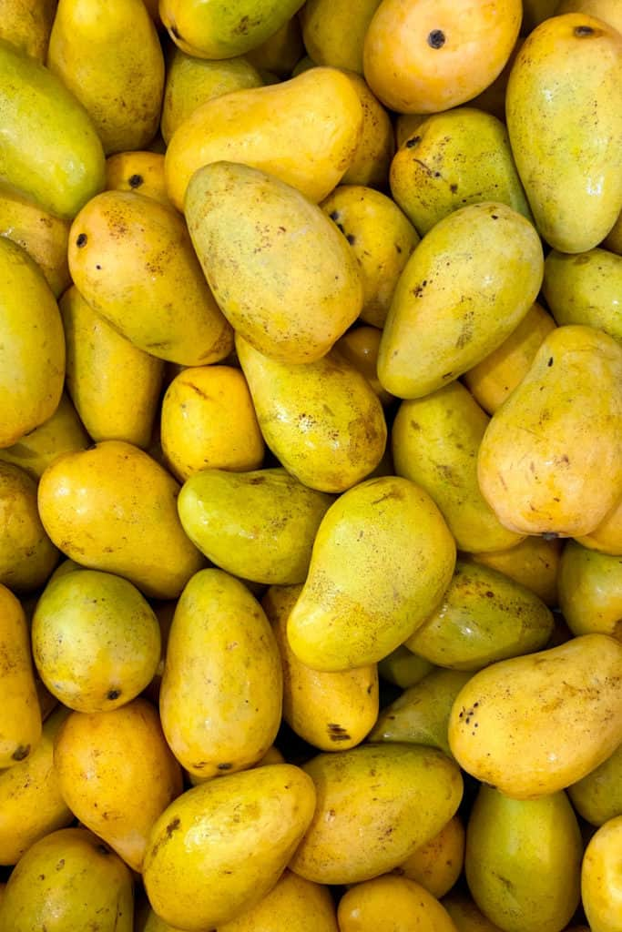 Ataúlfo mangoes ( young, baby, yellow, honey, Adaulfo, Adolfo, or Champagne mango)
