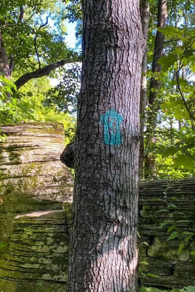 Green Trail Markers (Upper Pinnacles Trail)