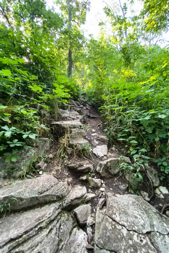 Rocky Path Along the Green Trail