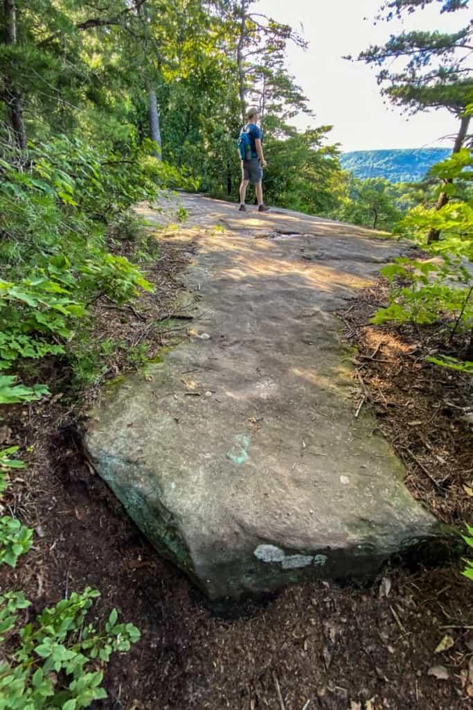 Trail Blaze on Rock (Near an Overlook)