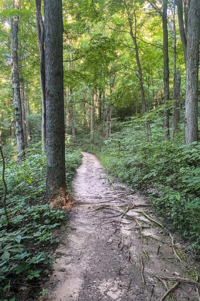 Easy Path Towards West Pinnacle