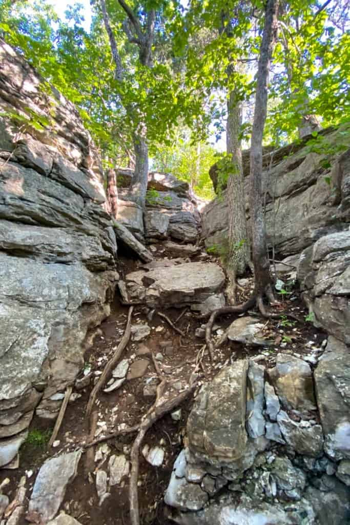 Rocky Path on West Pinnacle Trail