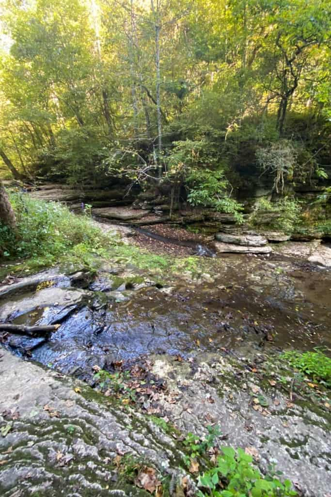 Evan's Mill Pond + Dam