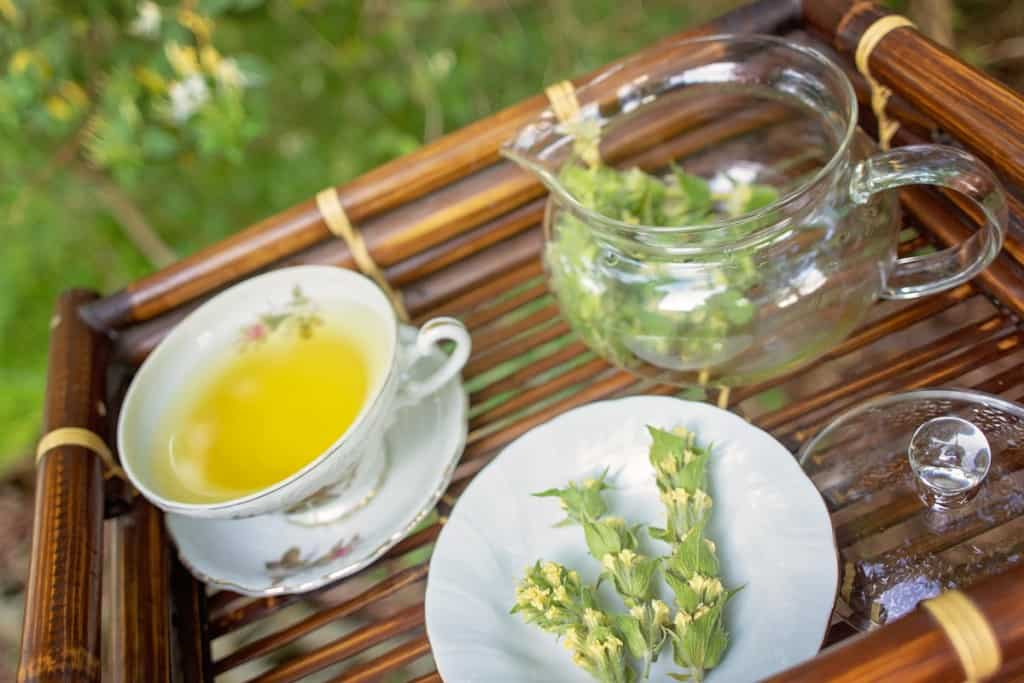 Steeping Herbal Tea with a Teapot