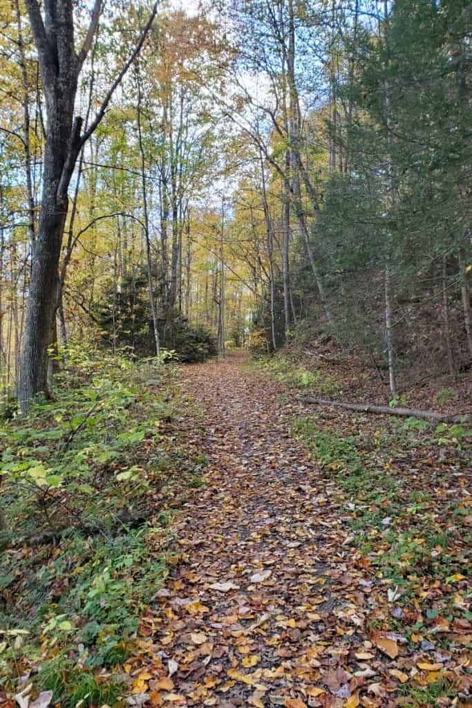 Gray Flats Trail