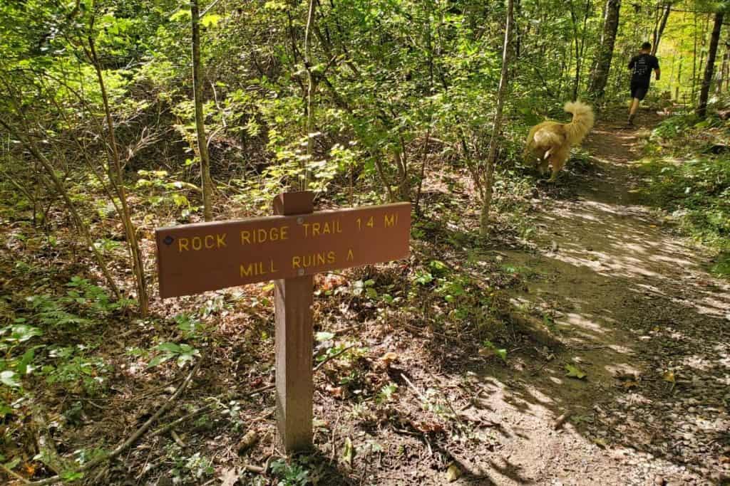 Rock Ridge Trail Junction