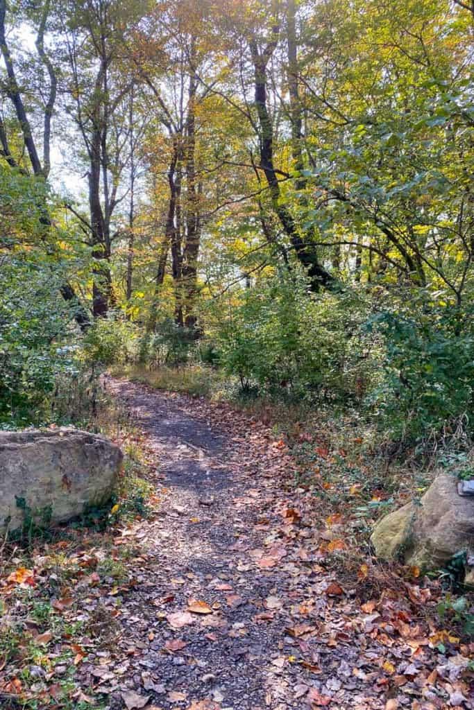 Turn Left Towards the Trailhead