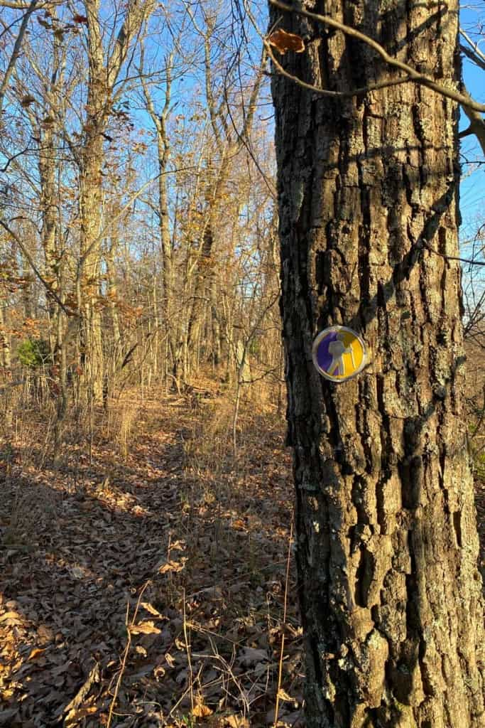 Gold + Purple Trail Markers