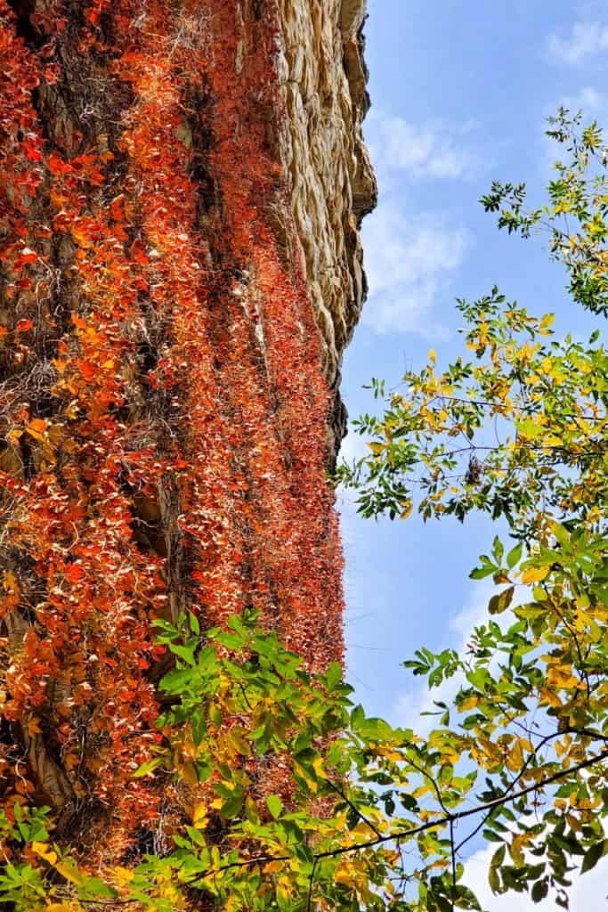 Falling Rock Trail