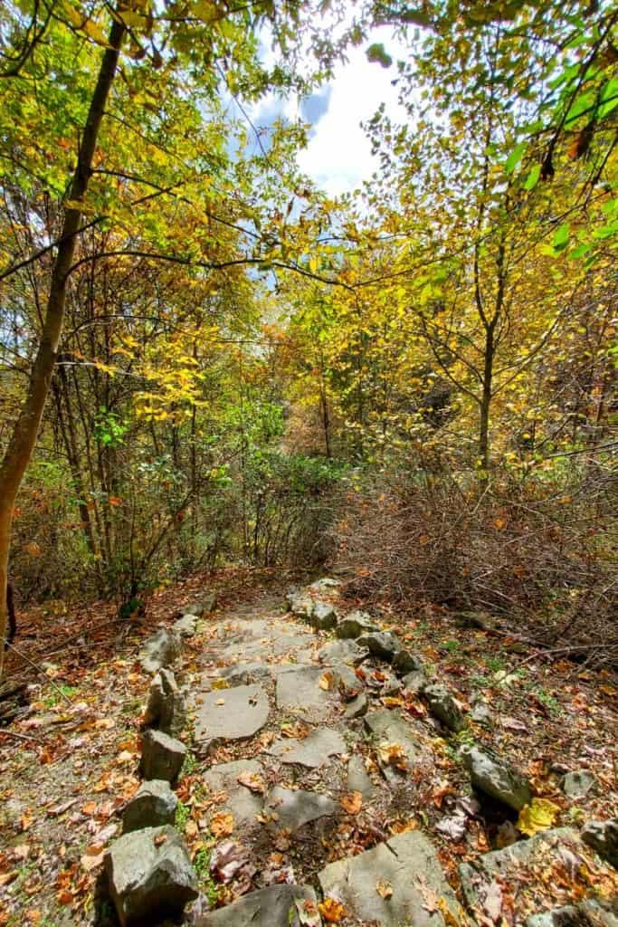 Falling Rock Trail views