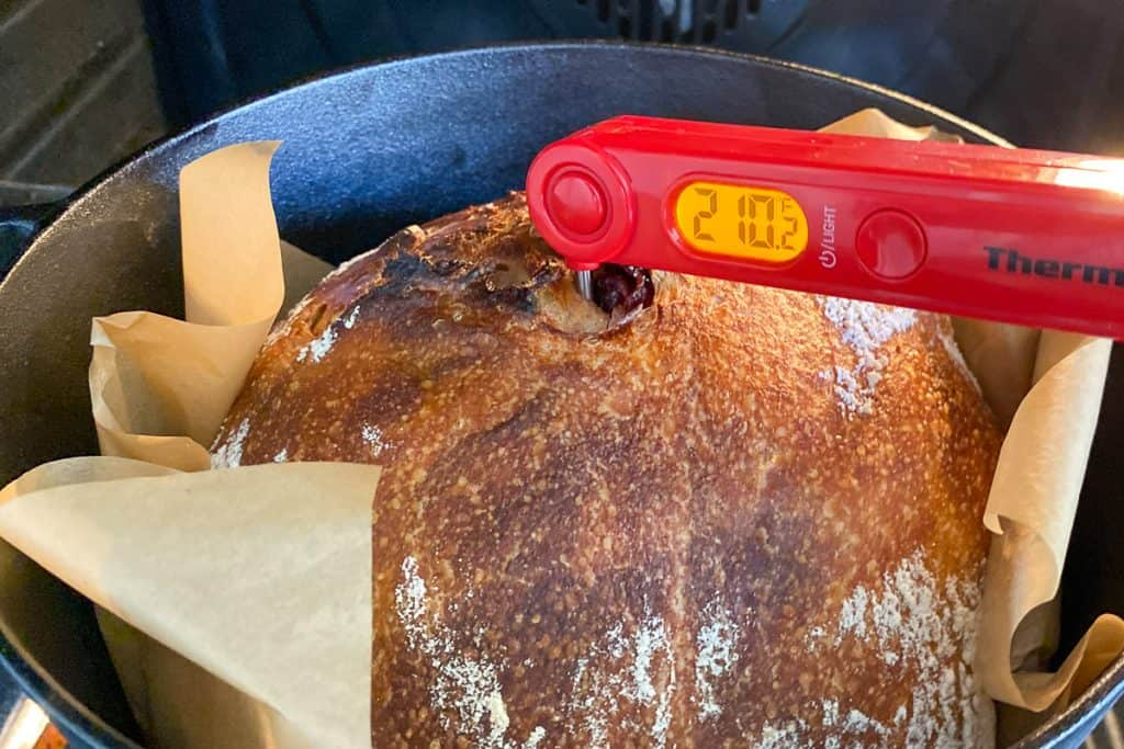 Check Temperature with a Digital Thermometer