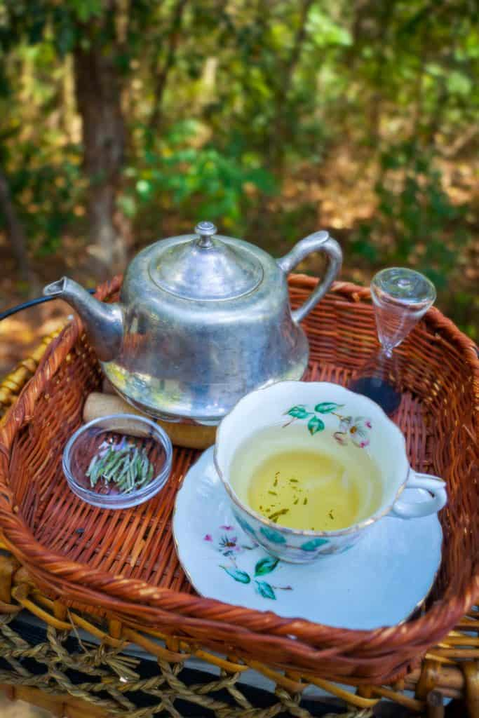 Silver teapot and china teacup