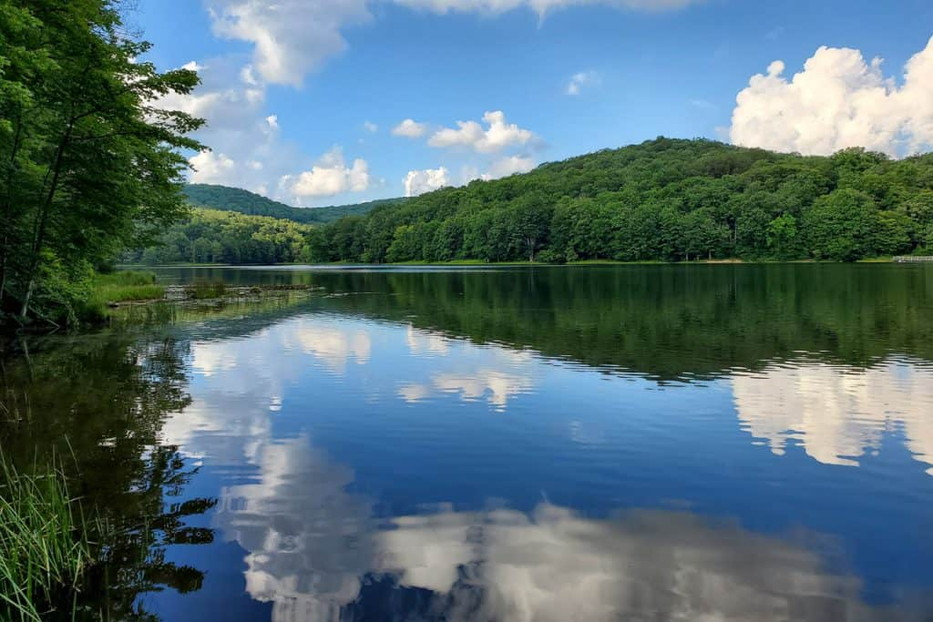 Lake reflection of forested hill