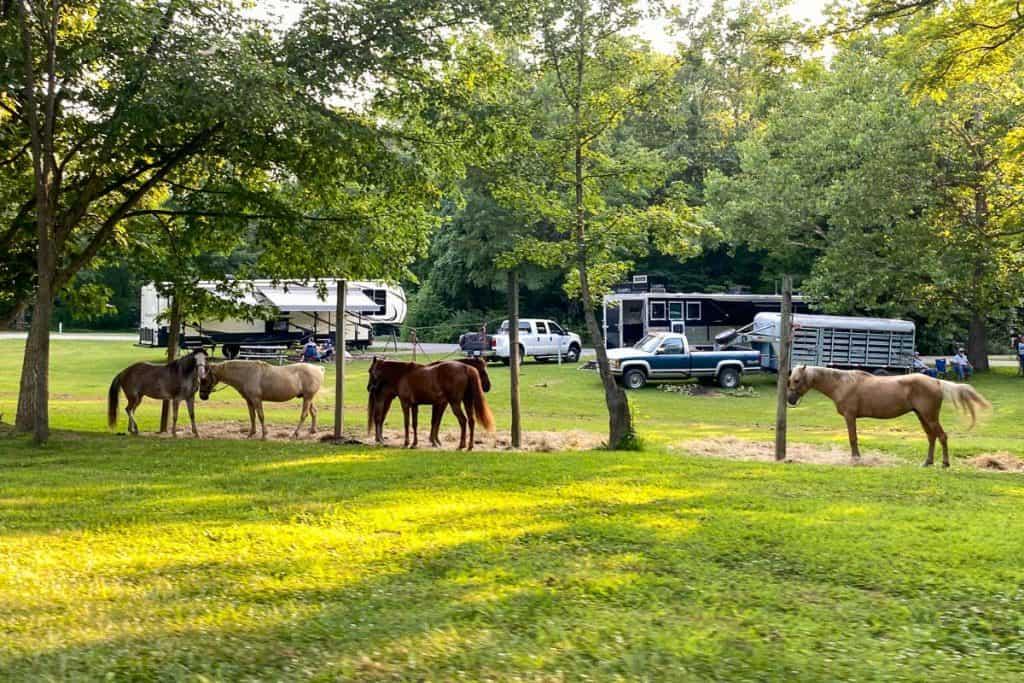 Equestrian Camping Spots