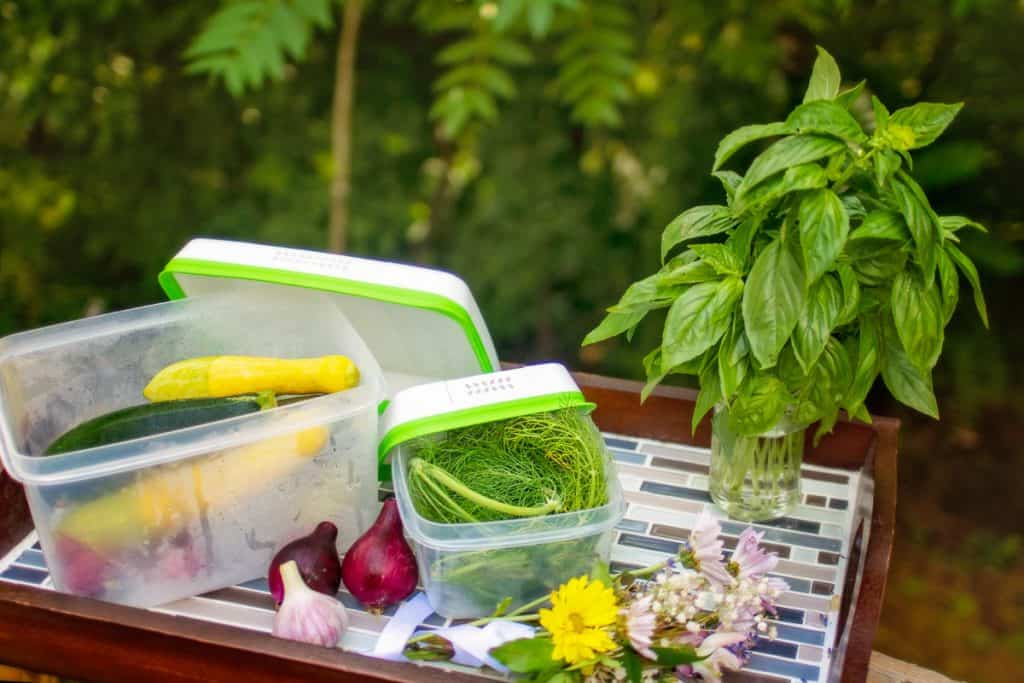 Rubbermaid Freshkeepers with fresh vegetables stored inside